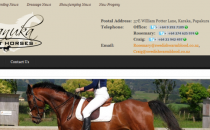 Screenshot of the website for Manuka Sport Horses
