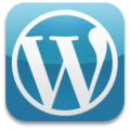 Wordpress Customisation Services