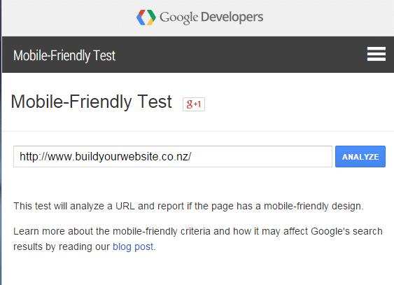 screenshot of entering the URL in google mobile testing tool